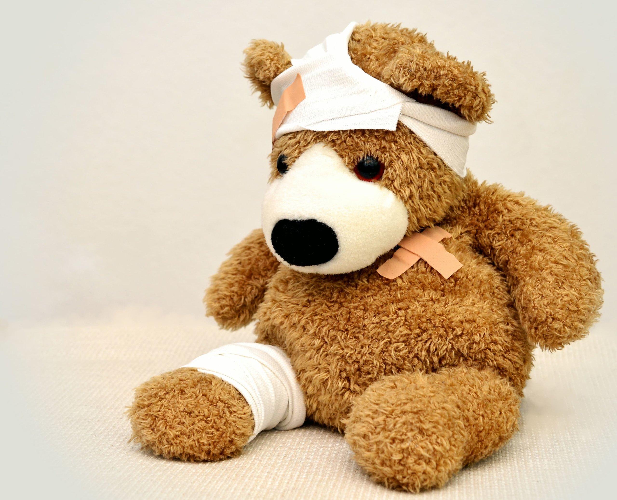 怪我をしたクマ